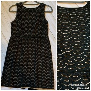 Ann Taylor Loft Black Overlay Cotton A-line Dress
